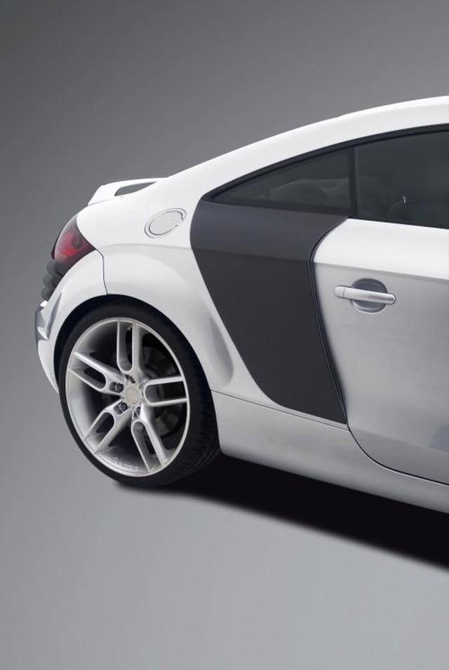 Caractere Lufteinlässe Audi TT 8J
