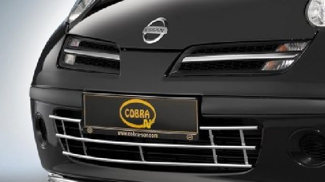 Stoßstangengrill Edelstahl  12 mm für Nissan Micra